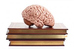 BrainBook-300x199