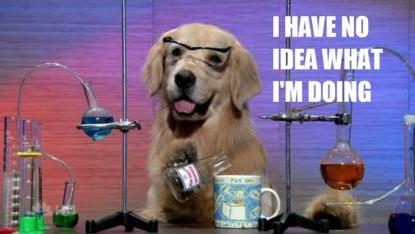 chemistry-dog